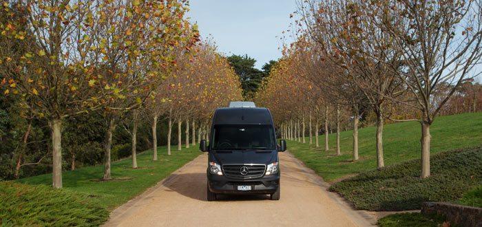 Mercedes-Benz Passenger Vehicle on Driveway
