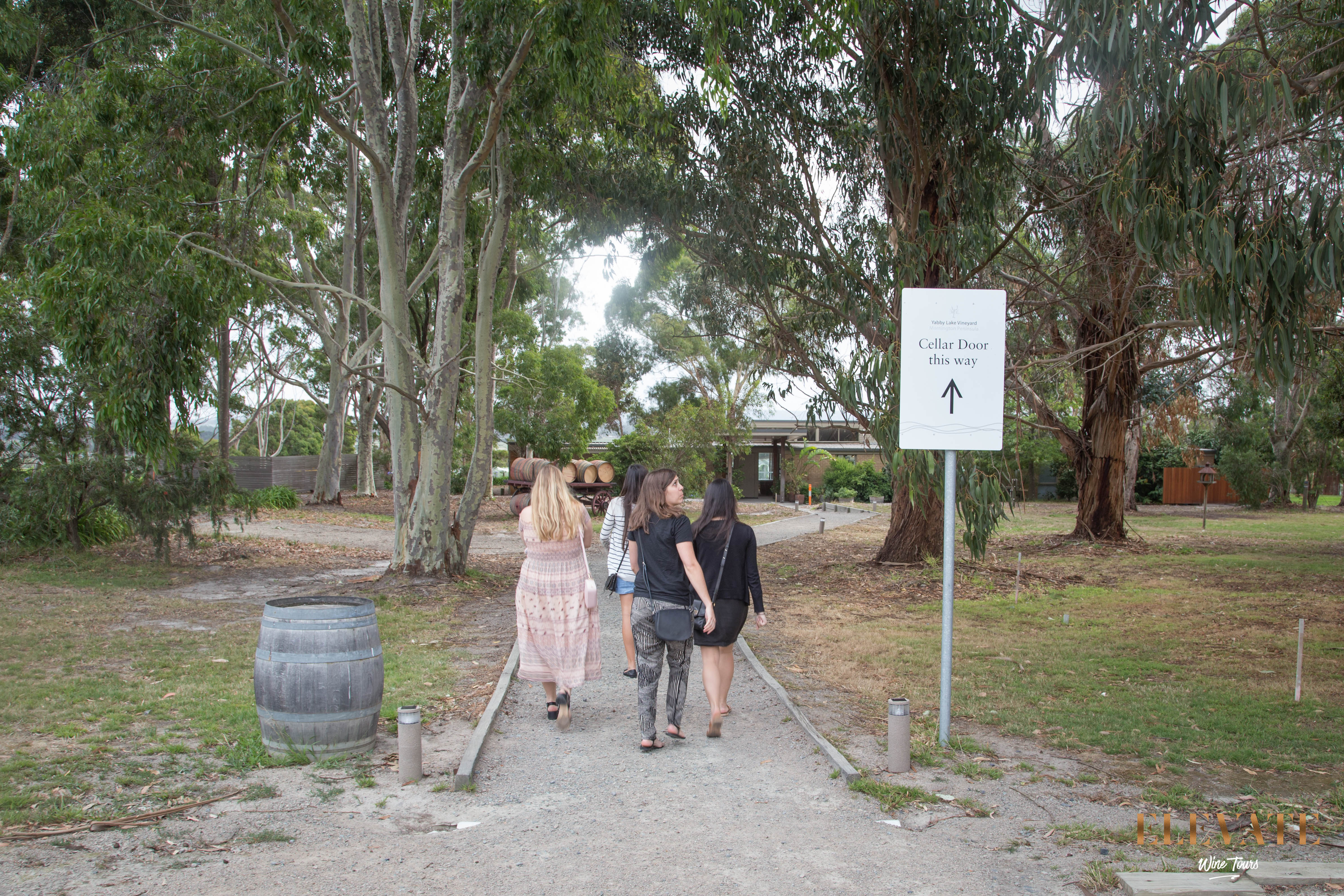 First stop of the wine tour at Yabby Lake Vineyard