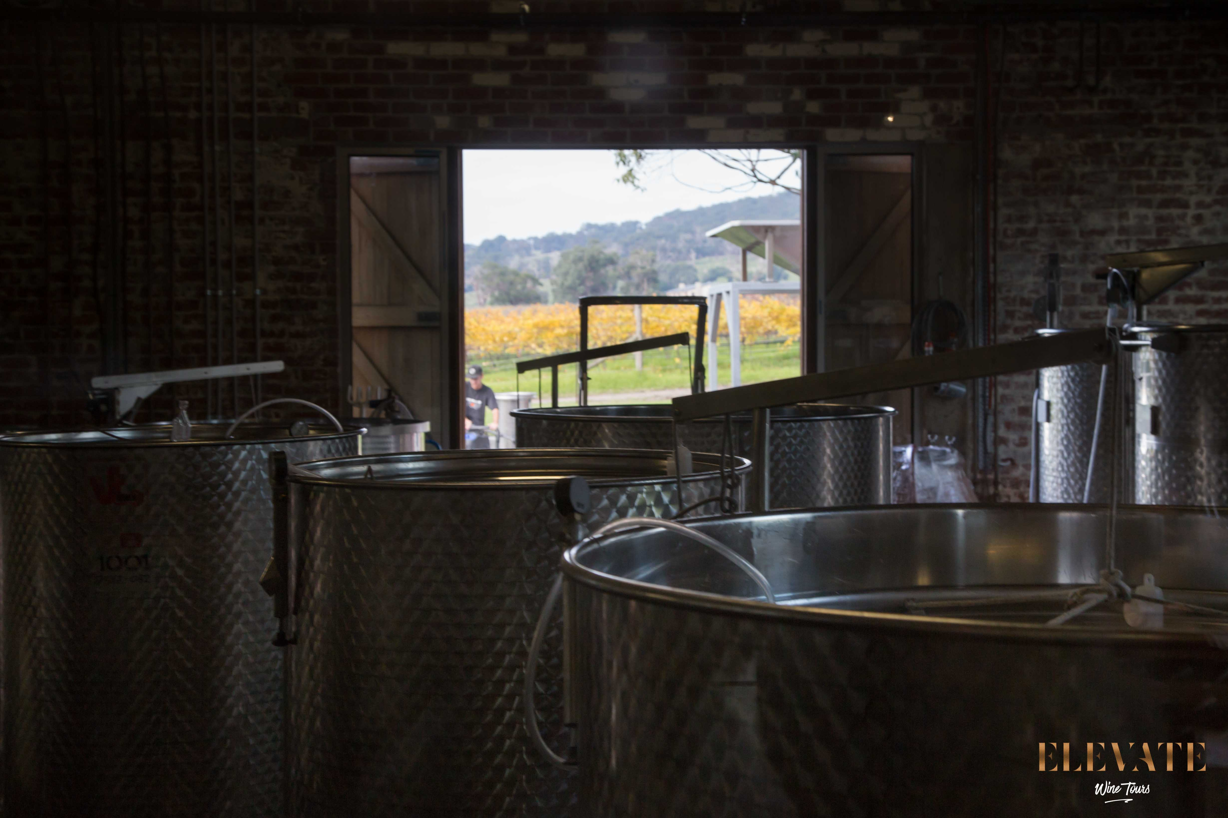 MORNINGTON-PENINSULA-WINERY-TOUR-ELEVATE-19
