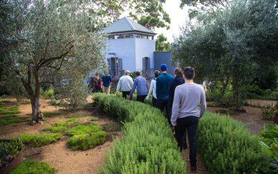 Mornington Peninsula Wine Tour – Birthday Celebrations