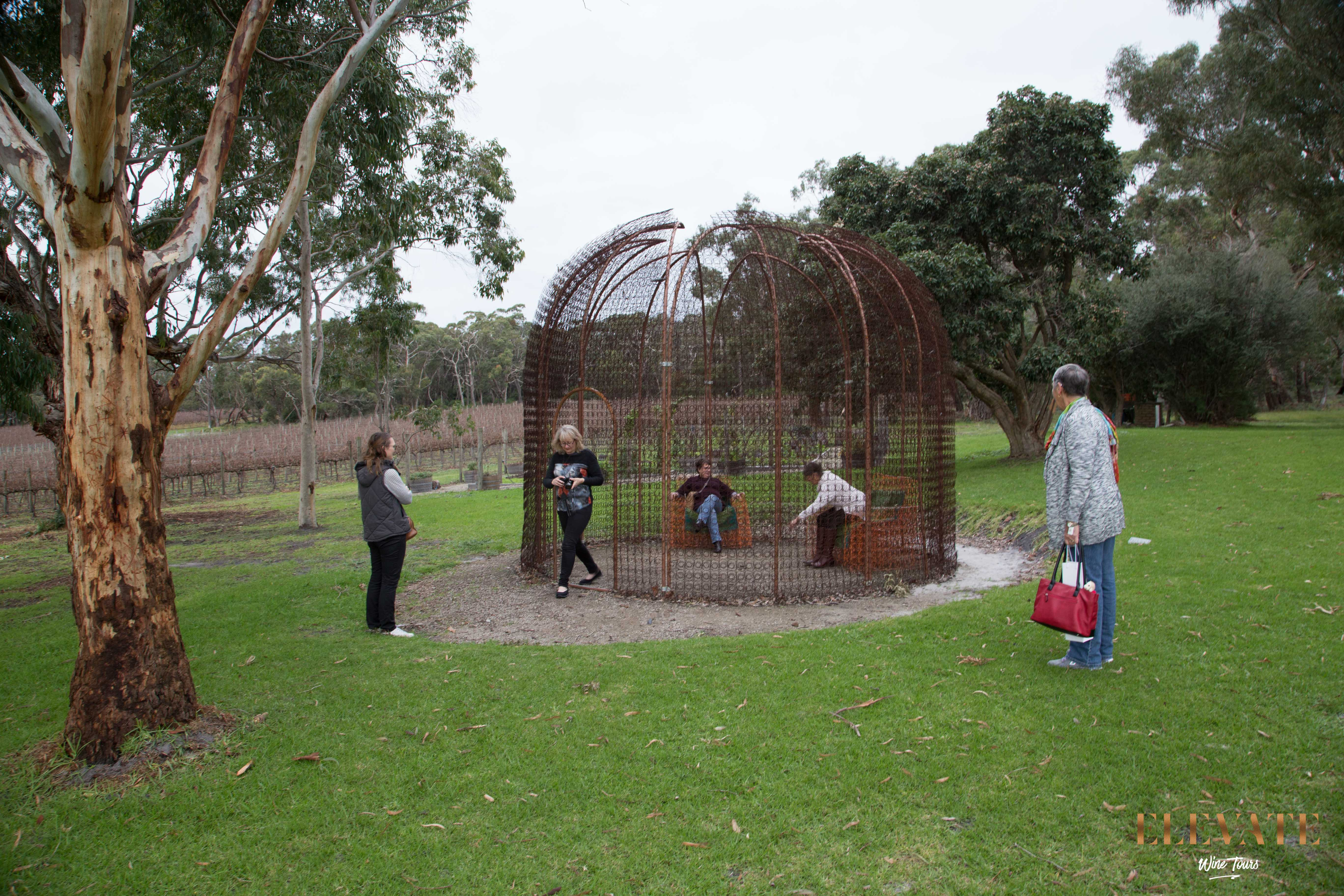 MORNINGTON-PENINSULA-WINERY-TOUR-ELEVATE-5