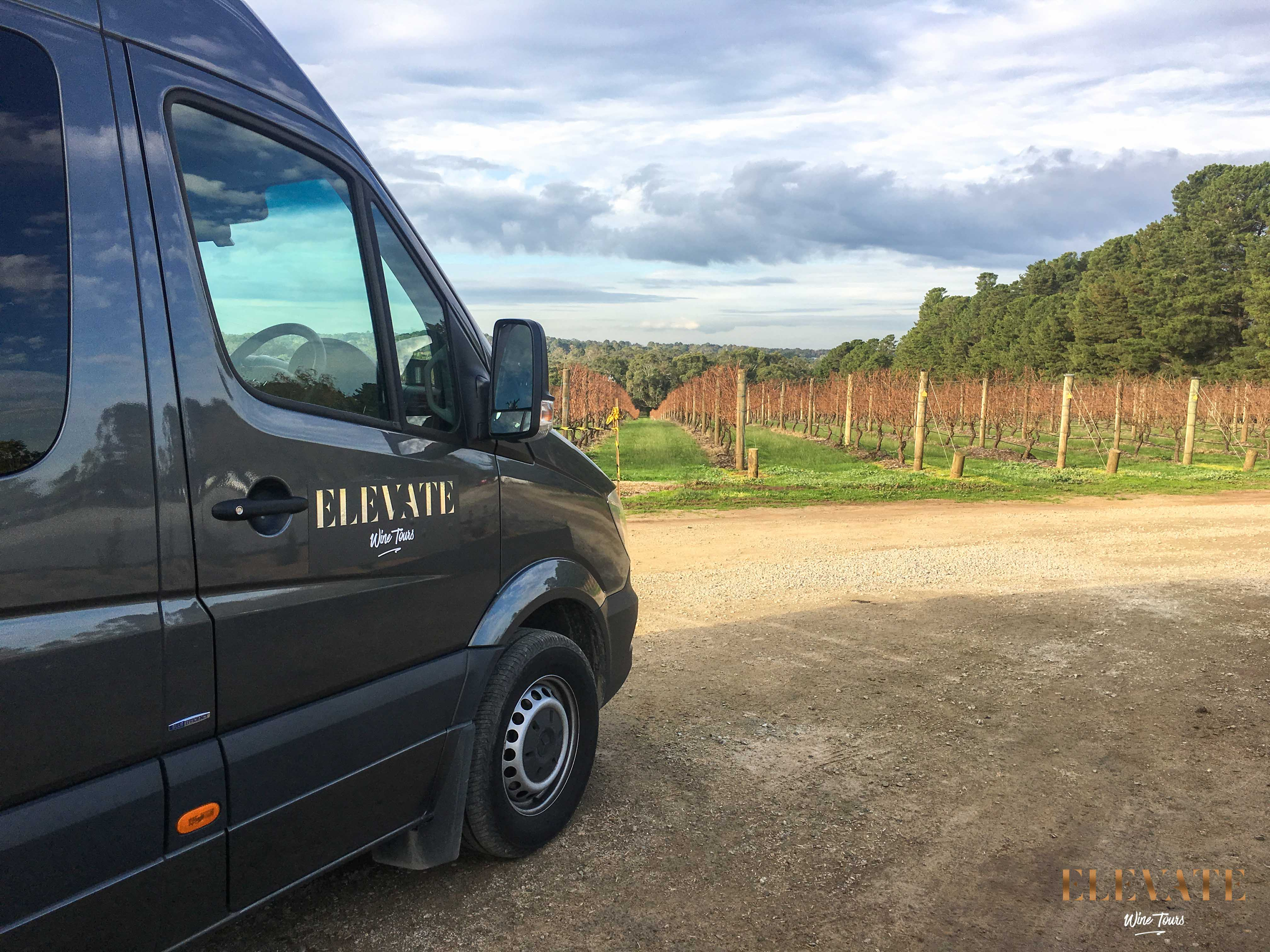 ELEVATE-WINE-TOURS-VEHICLE