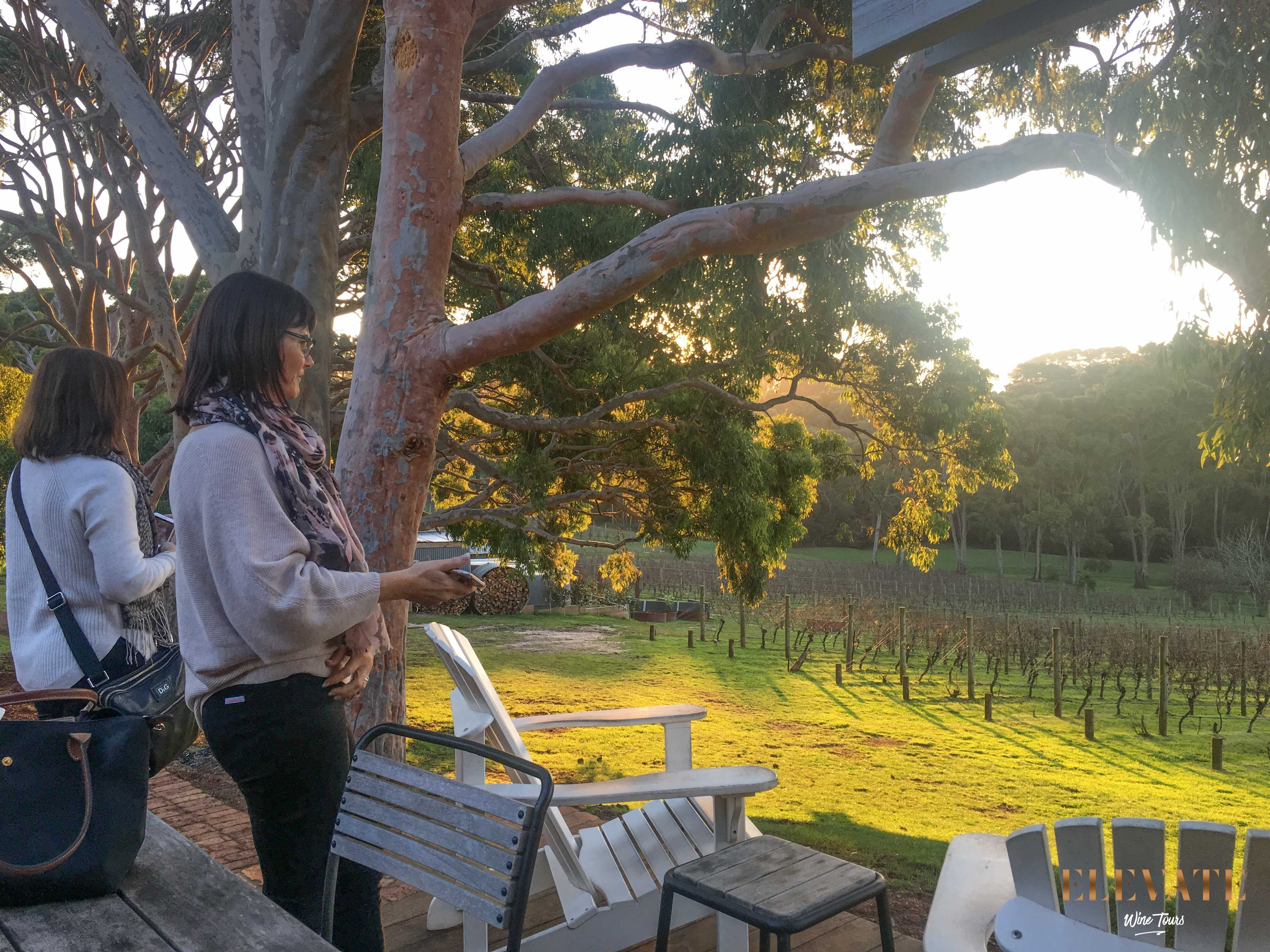 POLPERRO-WINERY-MORNINGTON-PENINSULA