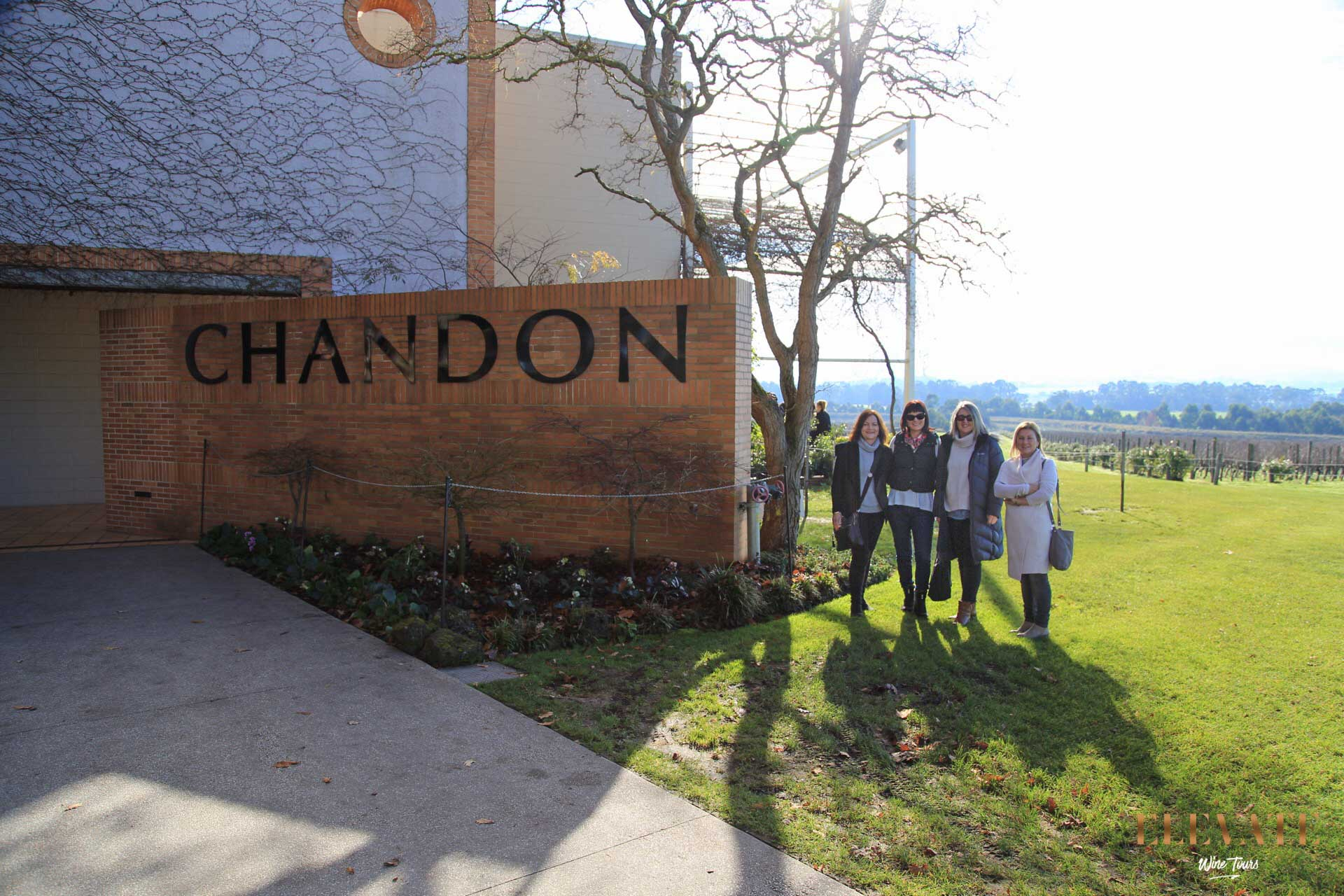 CHANDON-YARRA-VALLEY-WINE-TOUR
