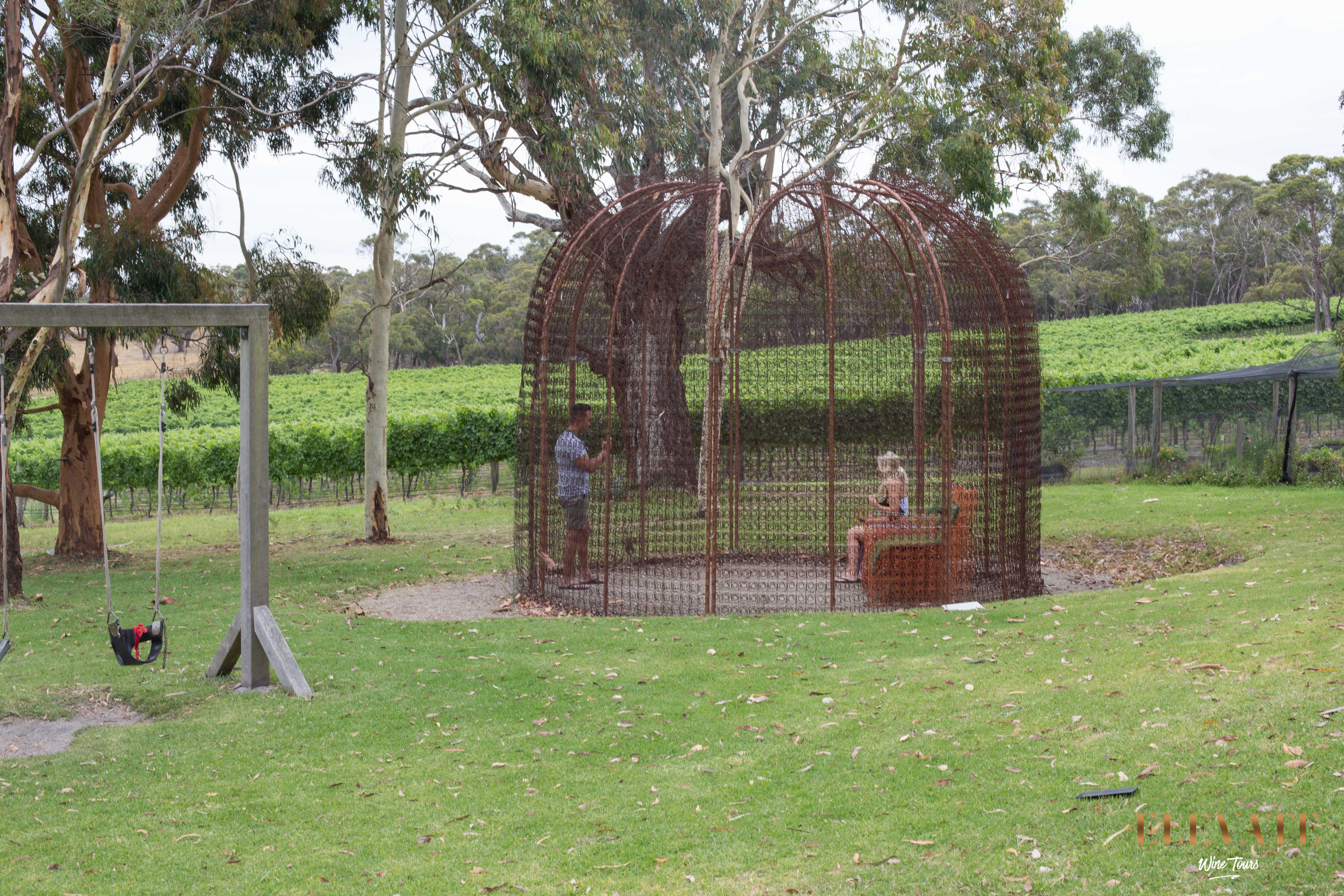 MORNINGTON-PENINSULA-WINE-TOUR-ELEVATE-5