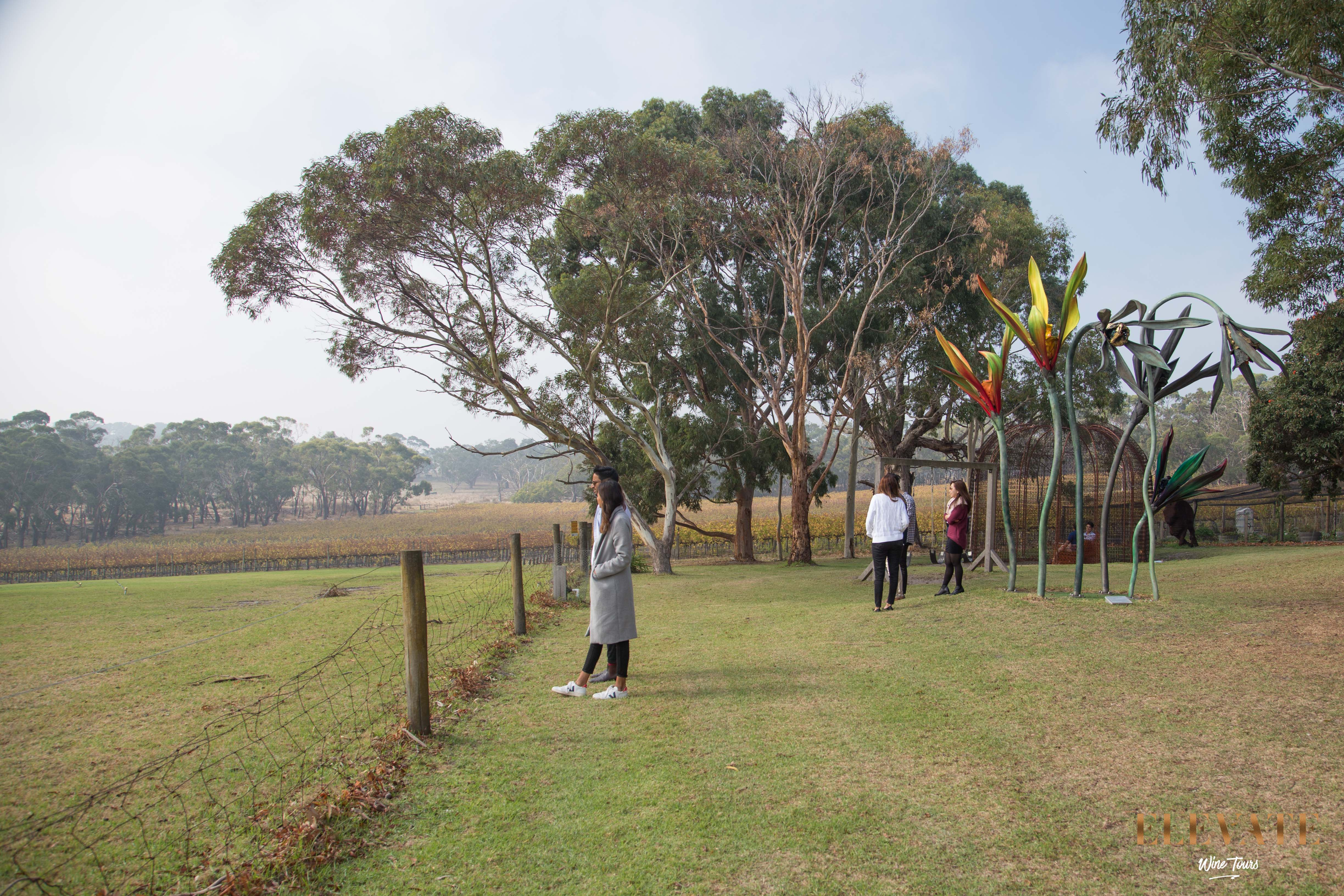MORNINGTON-PENINSULA-WINERY-TOUR-5