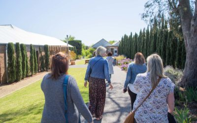School is out for Teachers on Winery Tour
