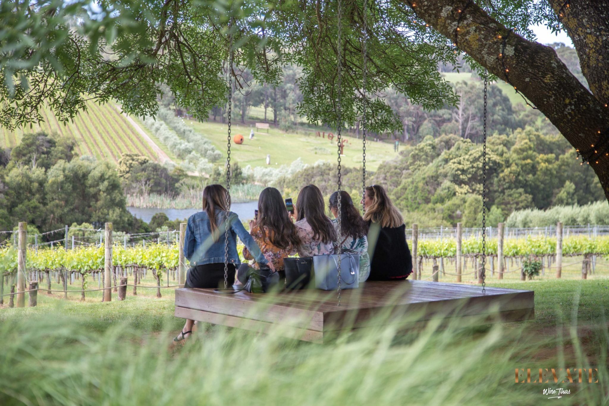 Ladies on a suspended platform underneath a tree at a vineyard overlooking the vines